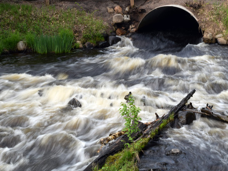 WDFW Funds Fish Barrier Removal