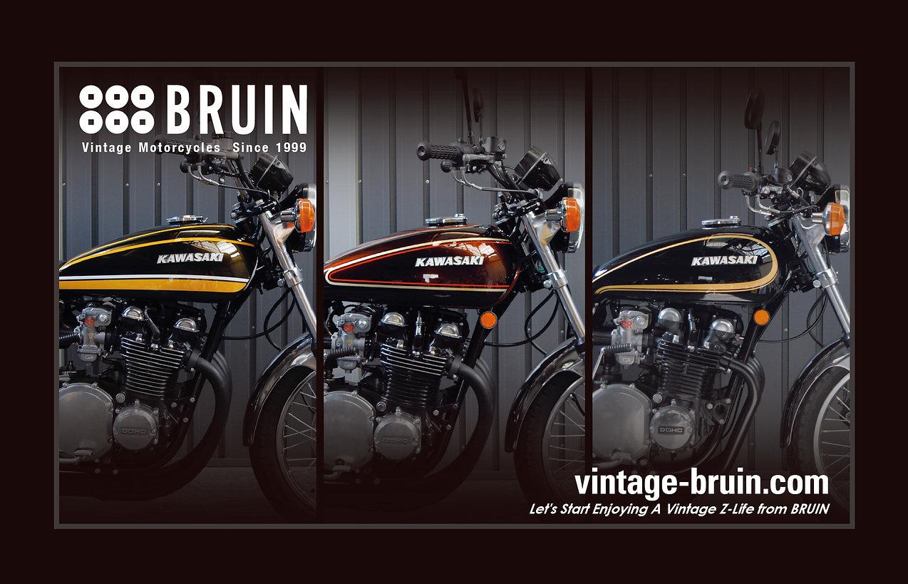 BRUIN_BG_1807014_01.jpg