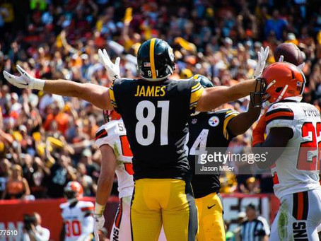 Lions release former Steelers tight end Jesse James
