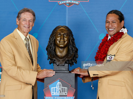 Troy Polamalu's Hall of Fame speech was one of the best ever