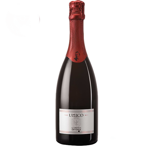 VINO LAMBRUSCO DI SORBARA UNICO 750ml
