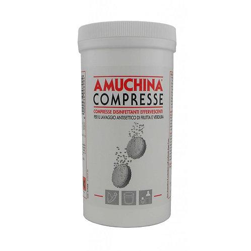 amuchina compresse disinfettanti effervescenti 250c.x2g