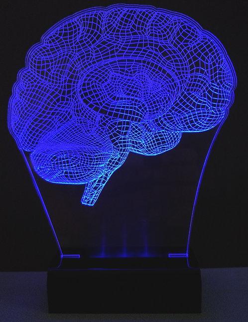 Luminária LED Neurologia Cérebro