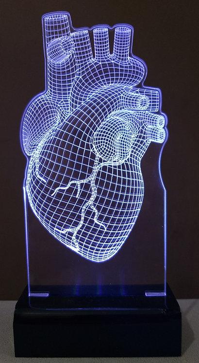 Luminária LED 3D Coração Cardiologia