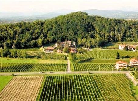 Discover Friuli Isonzo