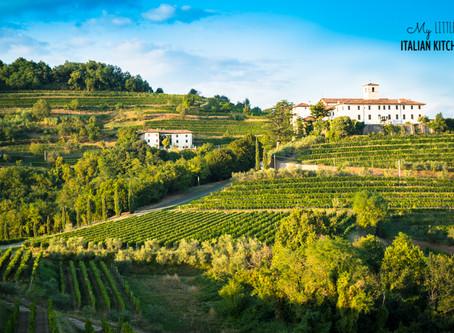 Introducing FVG Wine region