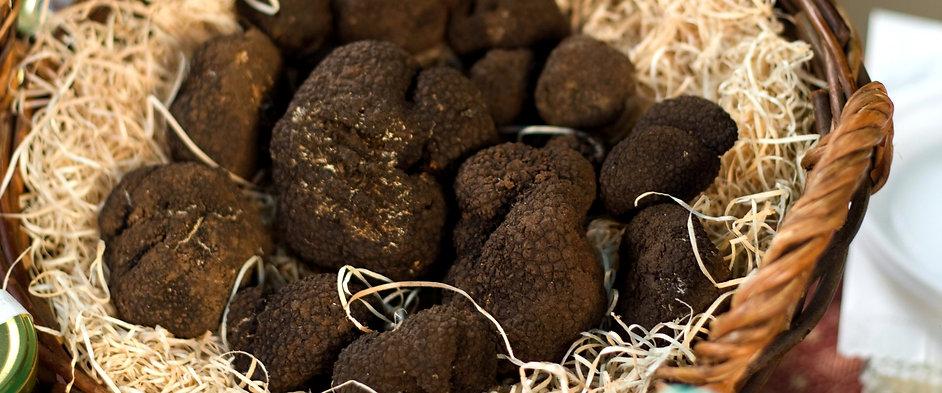 black-truffles-in-a-basket-157436973-5be