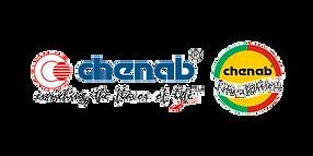 Chenab Impex_Transparent
