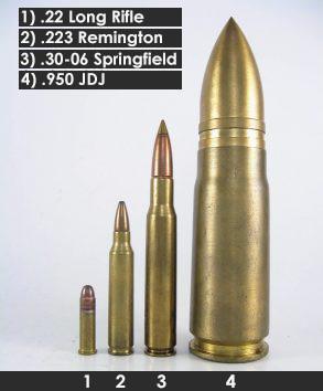 Сравнение калибров 22 LR, 223 Rem, 30-06 и 950 JDJ