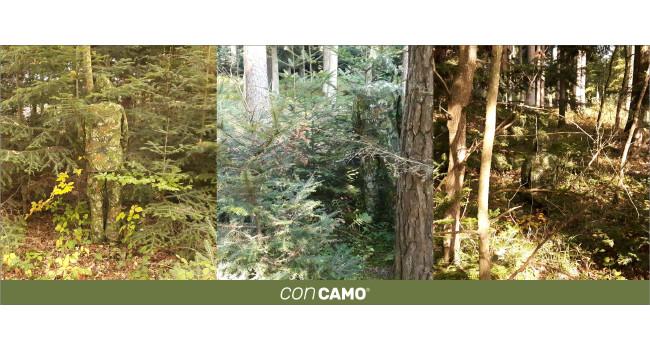 CONCAMO  в лесу с различным освещением