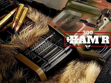 Патроны Sig Sauer 300 HAM'R