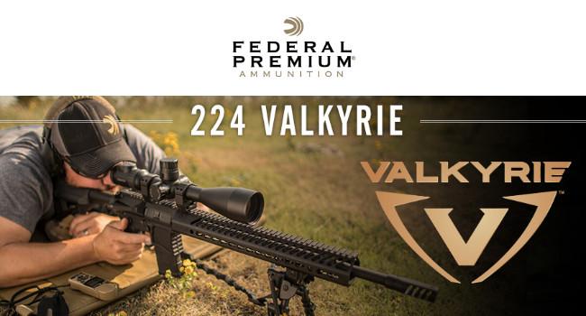 Новый патрон .224 Valkyrie в цифрах
