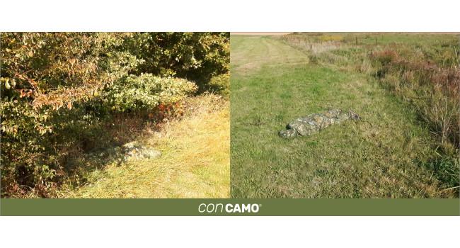 CONCAMO на поле с травой