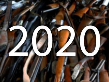 Итоги 2020 года - Ружья