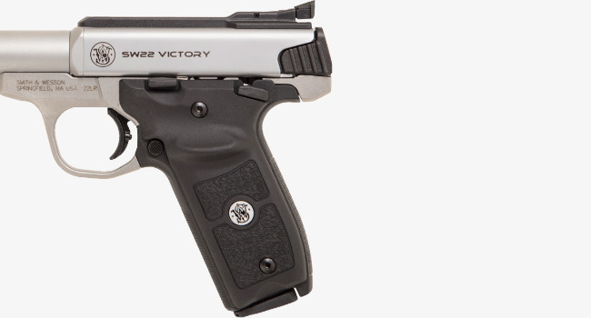 Smith Wesson SW22 Victory Target