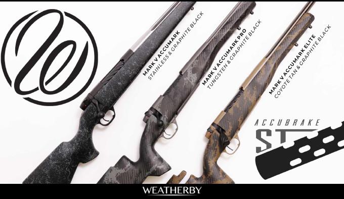 охотничьи винтовки для дальней стрельбы