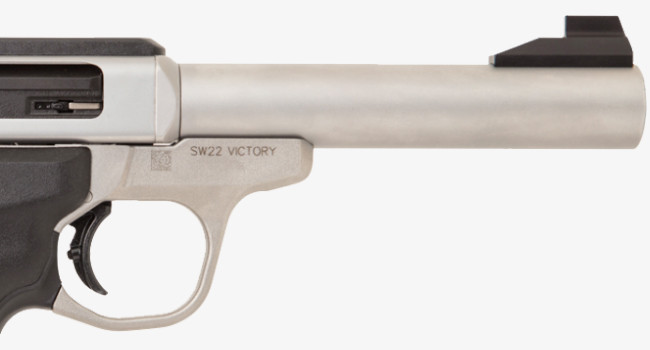 Smith & Wesson SW22 Victory Target
