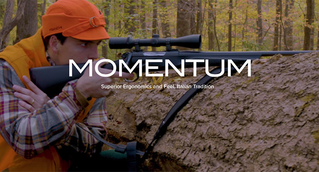 баннер Franchi Momentum