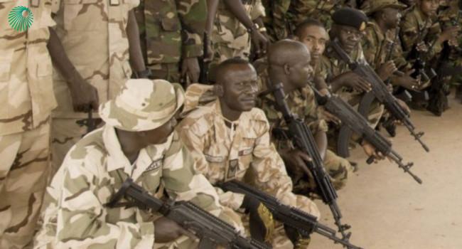винтовки Beryl M762 в Нигерии
