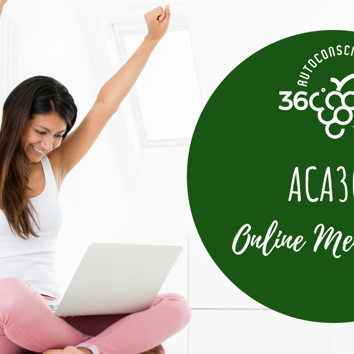 ACA360 Online Mentoring
