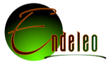 endeleo_nav-logo6_edited.png