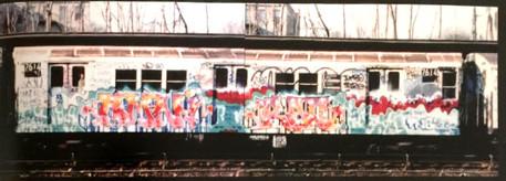 Baychester train