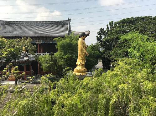 Ming Palace 1 (MP1-1F-B3-DR-03-118)