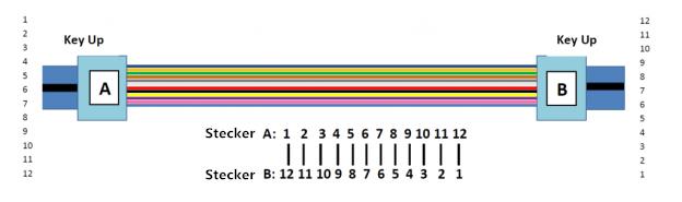 Typ-B MTP trunk Kabel