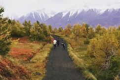 Iceland wanderers.jpg