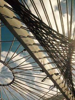 'The Reflection Nest'