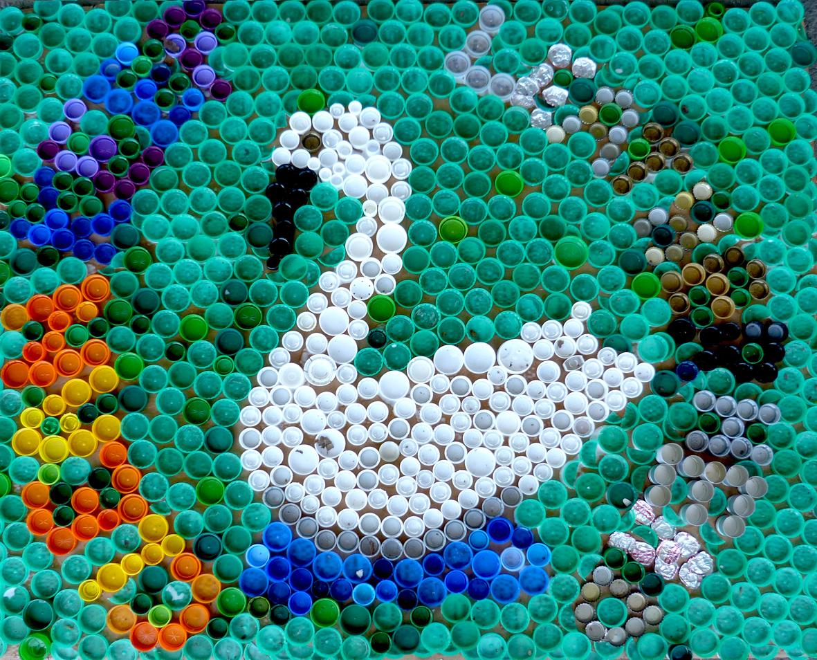 Swan litter