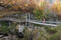 Bridge over Rogie Falls (2015)