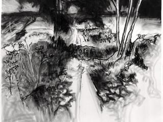 Ambulatory Drawing: Marsham Heath (270gsm 82x100cm)