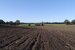 Lambert's Farm 1 (2014)