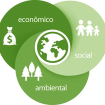 Sustentabilidade x Meio Ambiente