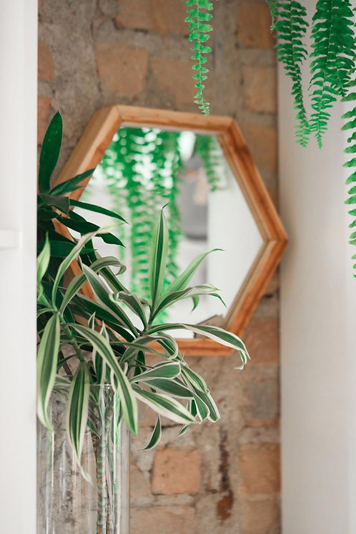 Espelho Hexagonal Pinus