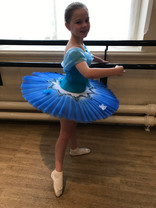 Cinderella themed tutu