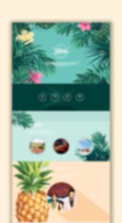 webmockupA1.jpg