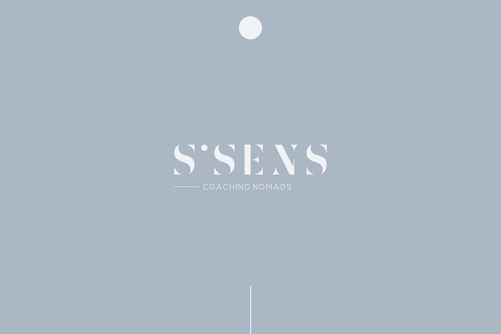 SSENS1.png