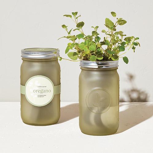 Garden Jar - Oregano