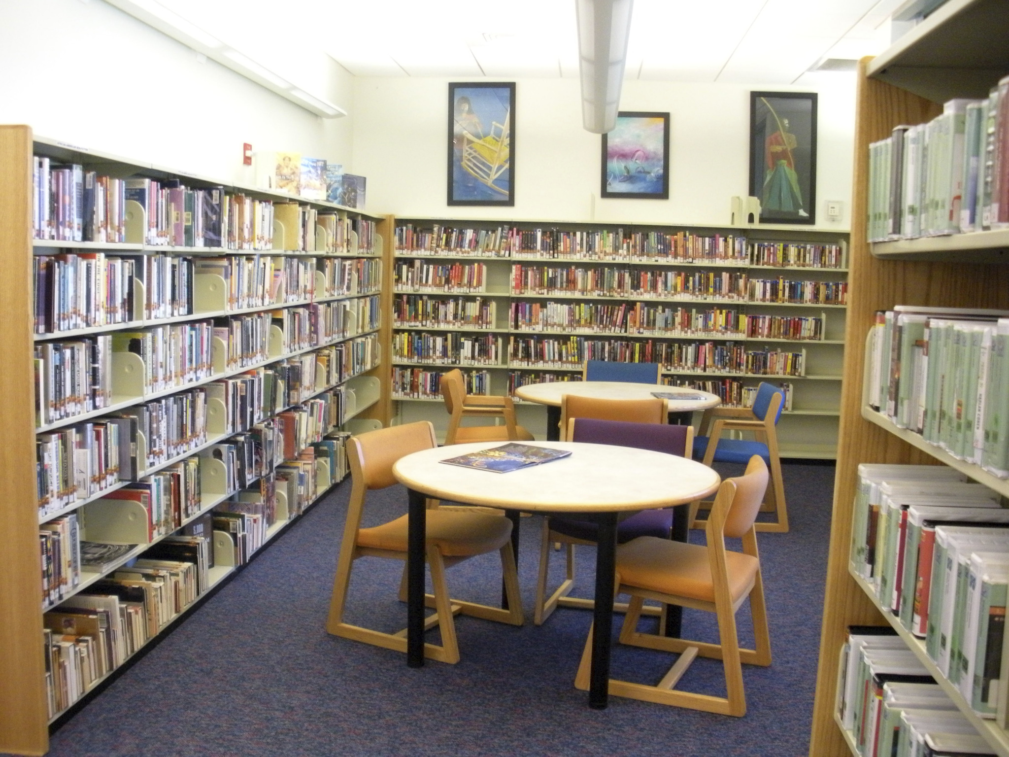 carver ranches library.jpg