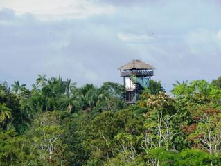 Planes de viajes a Leticia, Amazonas Colombia.
