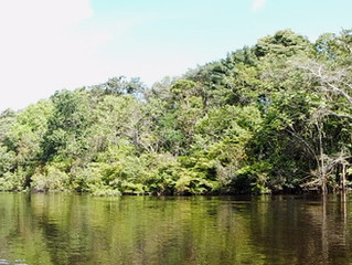 Excursiones en Leticia Amazonas