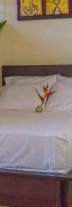 Hotel Amazon BB 2.jpg