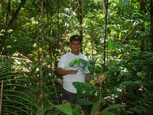 Amazonas (17).jpg