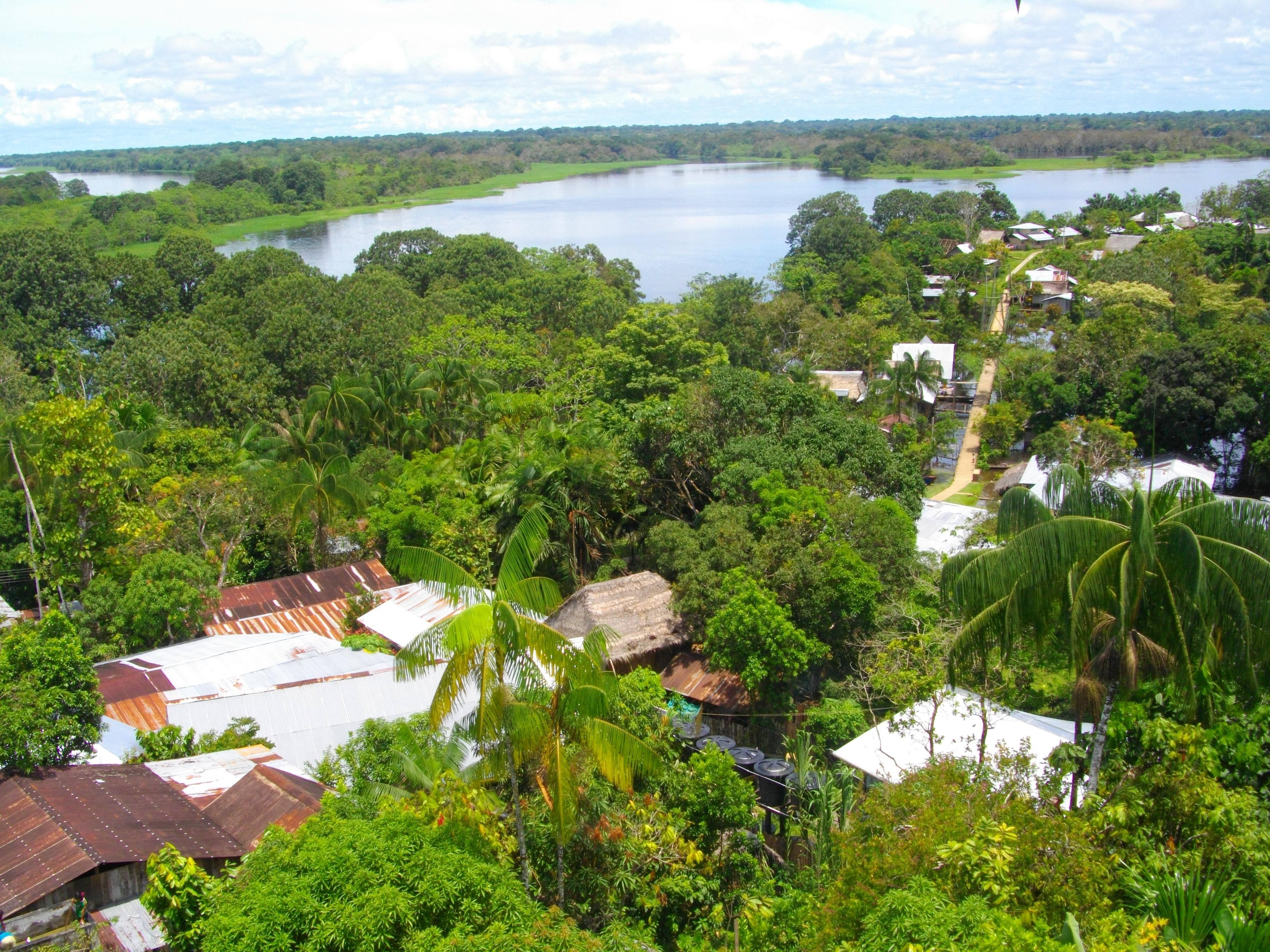 Vista de Puerto Nariño.