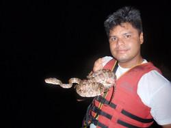 Safari Nocturno