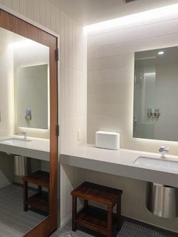 Bathroom Option 1.png