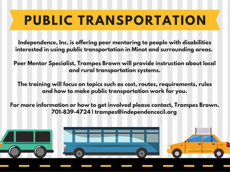 Public Transportation Mentoring