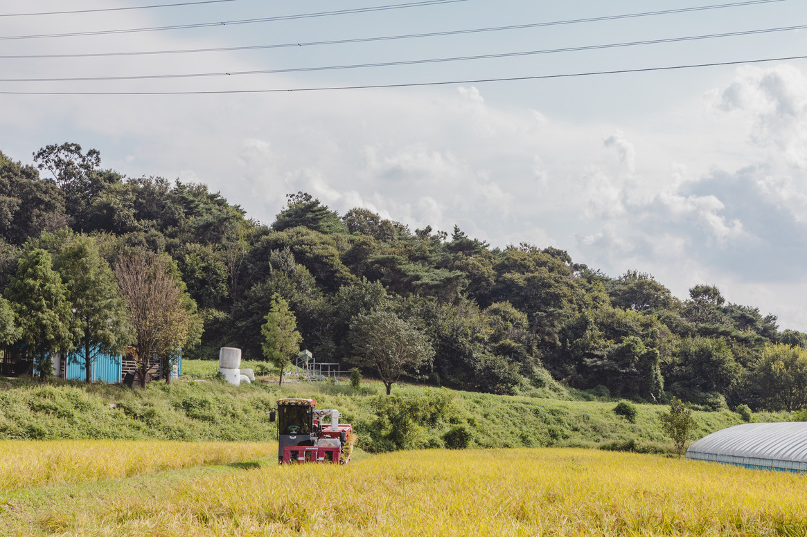 지역센터 마을활력소